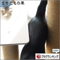 dai20170117_banner.jpg