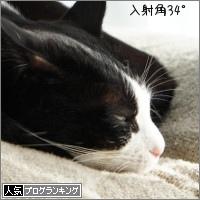 dai20170119_banner.jpg