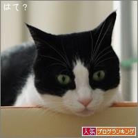 dai20170126_banner.jpg