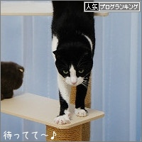 dai20170127_banner.jpg