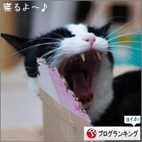 dai20170130_banner.jpg