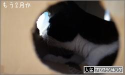 dai20170201_banner.jpg