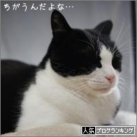 dai20170202_banner.jpg
