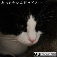 dai20170209_banner.jpg