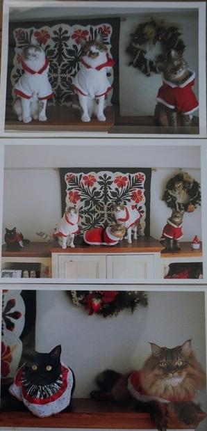 ヒカリさん特製クリスマスカード