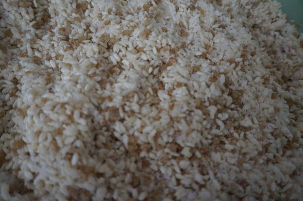 麹と塩を混ぜた状態