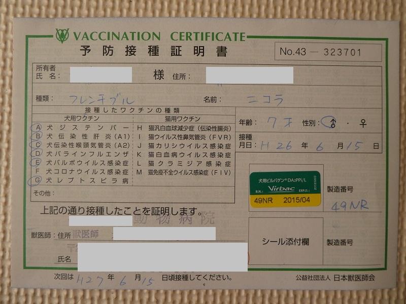 P1620467.jpg