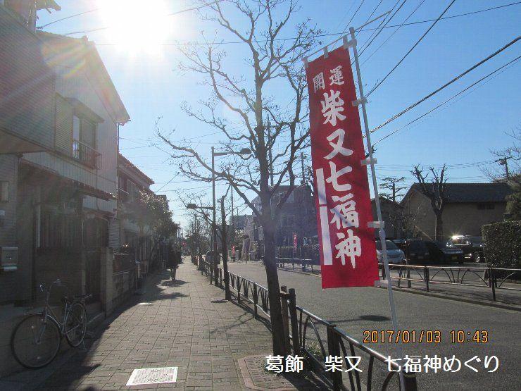 20170103shiba105.jpg