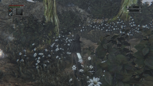 Bloodborne® The Old Hunters Edition_20161117202440