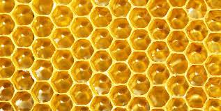 蜂の巣12時13分