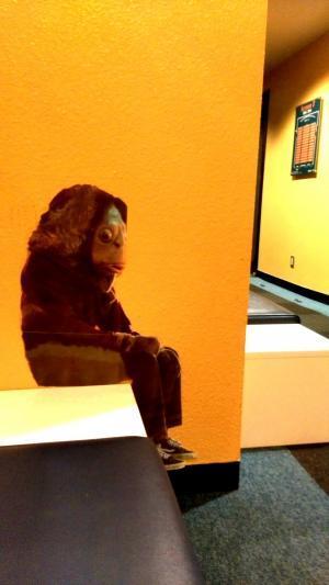 劇場内に居たの魚人間(誰かが撮影したものがネットに落ちていた)。ちょこんと座っている姿が哀愁を誘う。