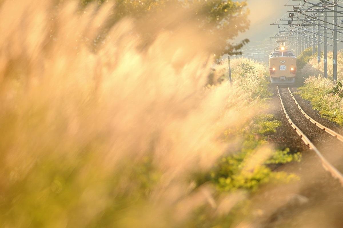 【あの頃の485系 その参】奥羽本線100周年記念号 及位越え