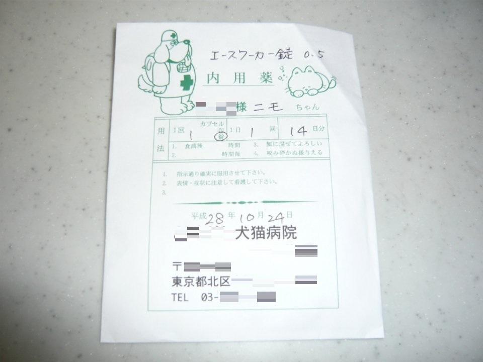 P1080959[1]