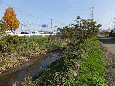渋田川分水路