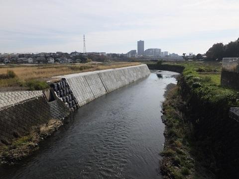 下土棚遊水地・中村橋下流