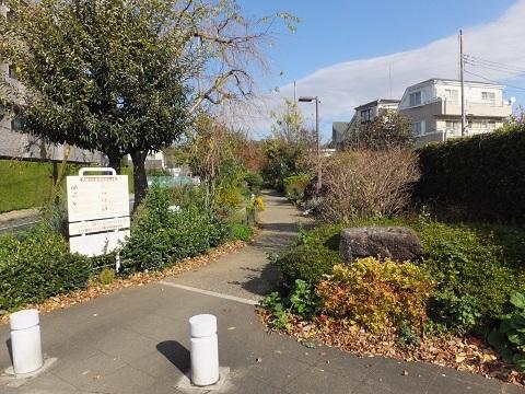 渋谷町水道みち・鎌田前耕地公園緑道