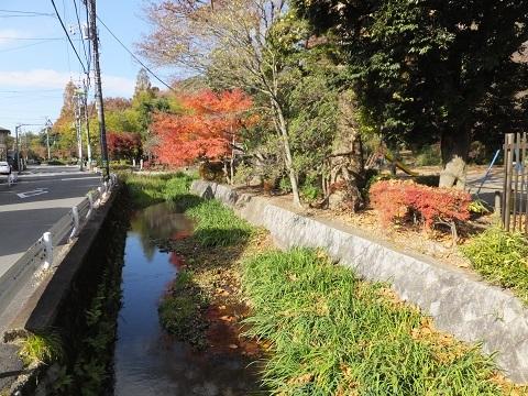 渋谷町水道みち・丸子川と交差