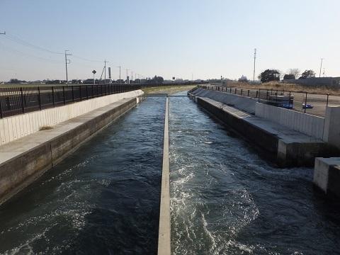 東水橋より武蔵水路下流を望む