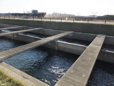 武蔵水路・水路中央の着脱式隔壁