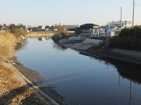 上星川橋より上星川下流を望む