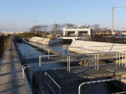 武蔵水路・上星川伏越吐口と星川水門