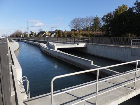 R17粕田橋下流の武蔵水路