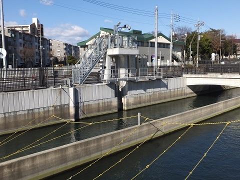 武蔵水路・赤見台放流口ゲート