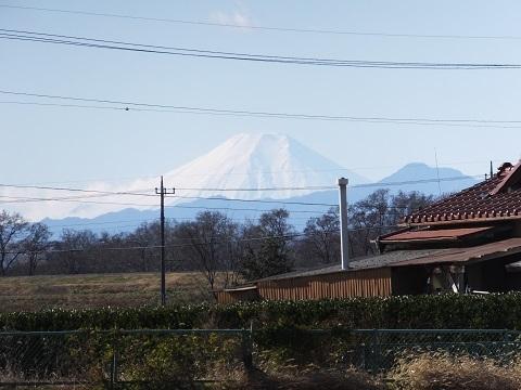 武蔵水路・富士山橋付近の富士山