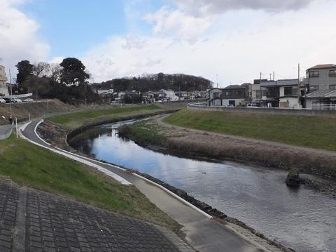 黒目川・笹橋上流