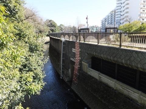 妙正寺川第二調節池排水口
