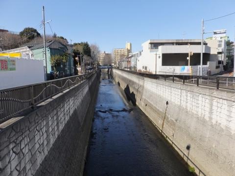 下田橋より妙正寺川上流を望む