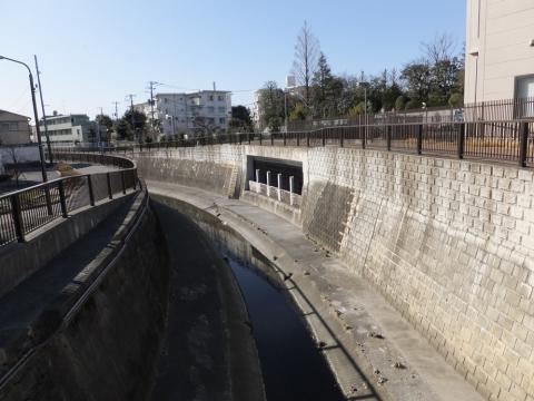 新昭栄橋より妙正寺川上流を望む