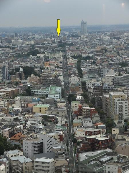 キャロットタワーより渋谷町水道みち、駒沢給水塔を望む