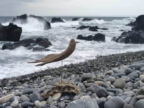流木の鳥ー2016-12-15-9