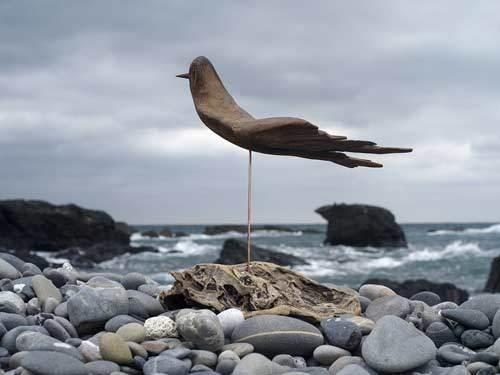 流木の鳥ー2016-12-15-10