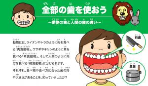 全部の歯を使おう