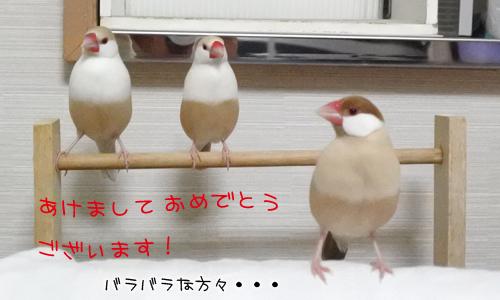 あけおめ_1