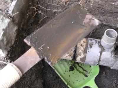 排水口 配管 配水 根っこ 原因 土砂 汚泥 管 詰まり 閉塞