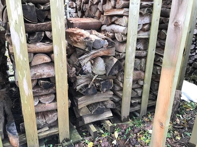 2016冬の薪運び4