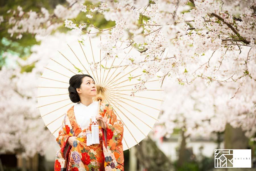 和装前撮り桜鎌倉縁28