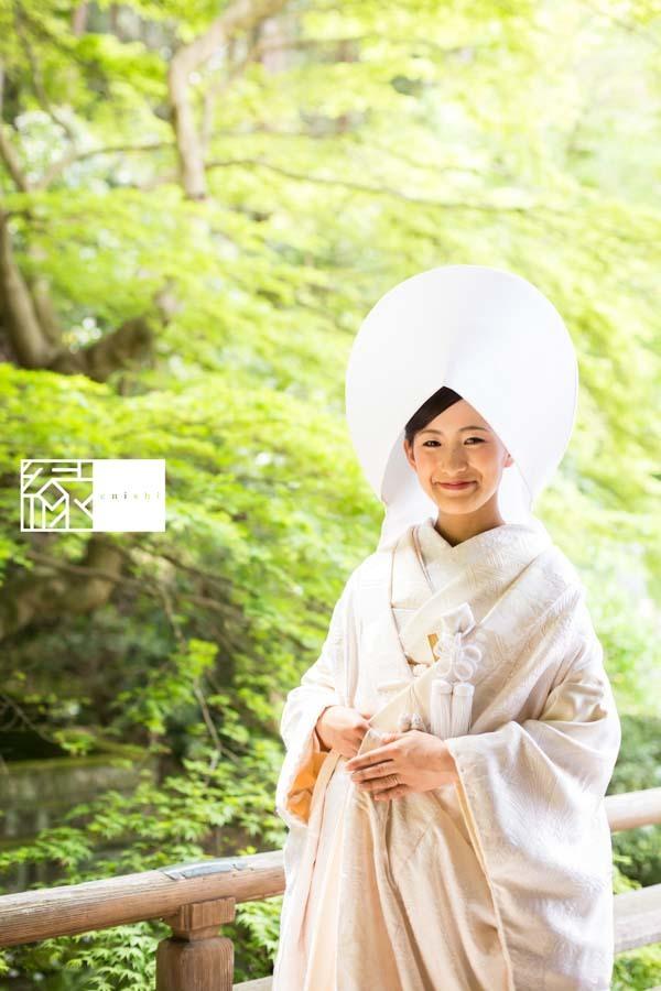 和装前撮り桜鎌倉縁23