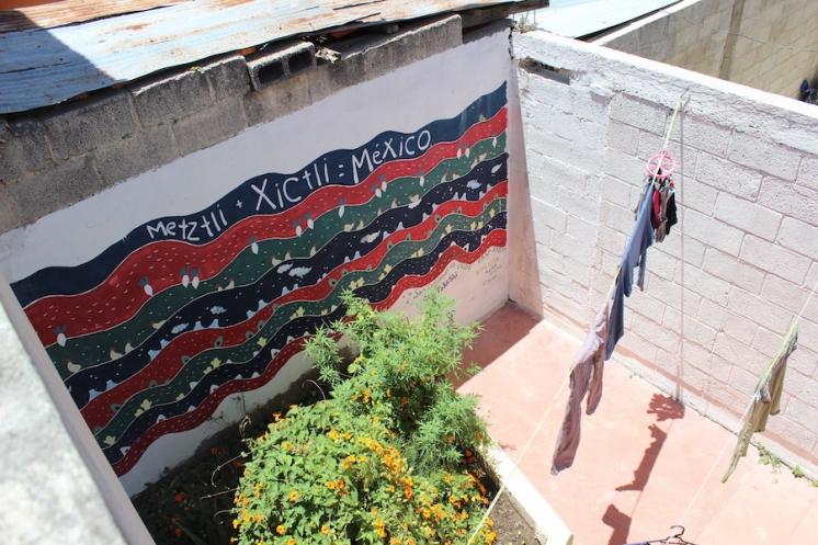 メキシコ000000011