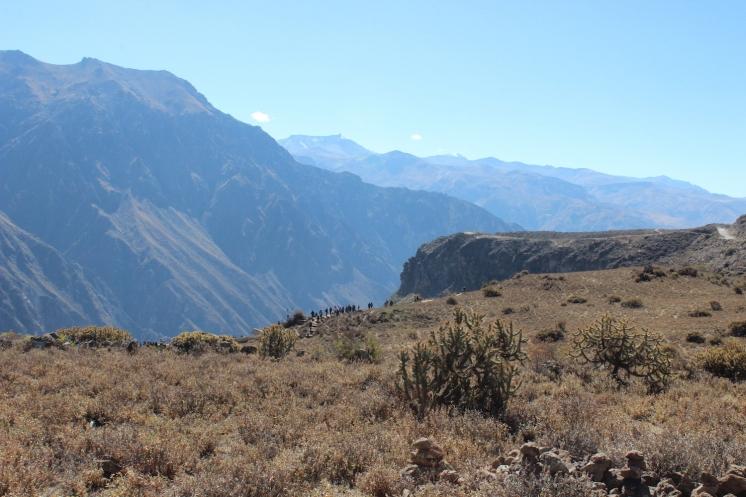ペルー000000014