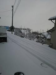 雪1月15日