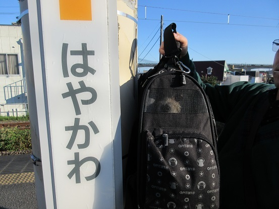 10K01 早川駅14:47 1112