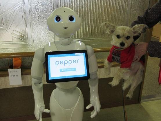 1P14 Pepper君 0206