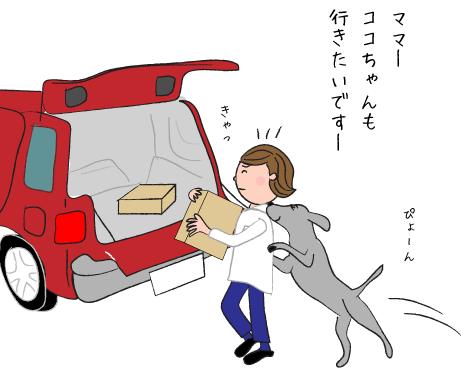 車とラブラドール