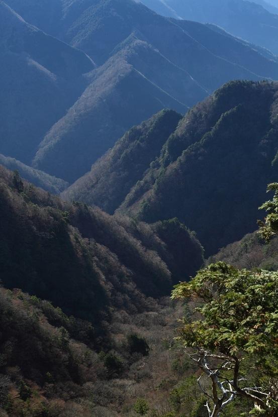 山上ヶ岳、15