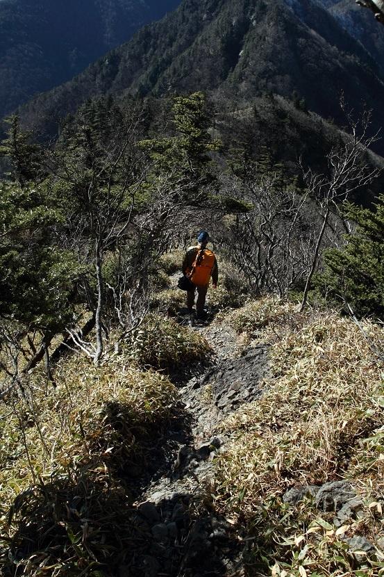 山上ヶ岳、26