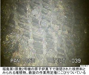 福島第1原発2号機原子炉真下の堆積物